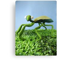 Mantis Canvas Print
