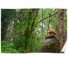 Zen Forest Quiet in Thailand Poster