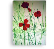 Just a few poppies Canvas Print