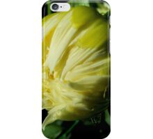 Dahlia about to unfold iPhone Case/Skin