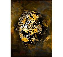 Lion 4 Photographic Print