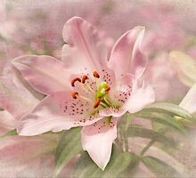 Spring Pink by Marilyn Cornwell