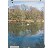 Cannop Ponds Forest of Dean iPad Case/Skin