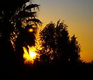 Sunset 2, today 2.9.11 about 5-6 pm by CrismanArt