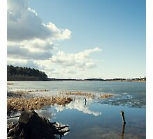 spring forest lake reflecting the blue sky  Photographic Print
