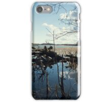 spring forest lake reflecting the blue sky  iPhone Case/Skin