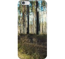 turn field road between the trees in the spring forest iPhone Case/Skin