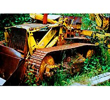 digger Photographic Print