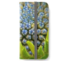 Blue Buds Amongst Emerging Petals iPhone Wallet/Case/Skin