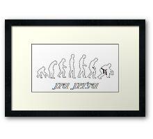 Jiu jitsu evolution Framed Print