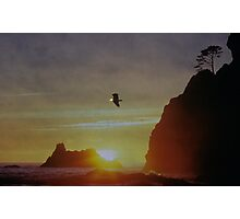 Eagle on the Pacific Photographic Print