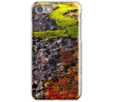 Natural Paths iPhone Case/Skin