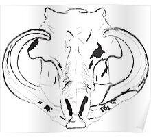 Warthog Skull Poster