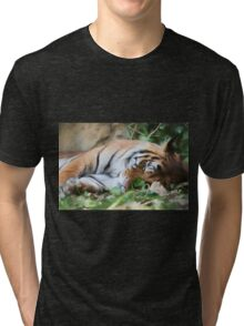 tiger at the zoo Tri-blend T-Shirt