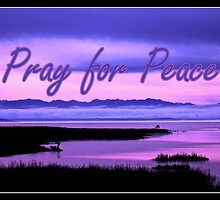 pray for peace (pink scenic) by dedmanshootn