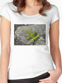 Green Sunshine - a Jade Colored Oak Leaf on the Rocks Women's Fitted Scoop T-Shirt