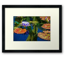 Autumn Lily Pad Impressions Framed Print