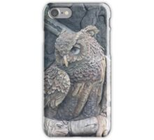 Disney Animal Kingdom Owl iPhone Case/Skin