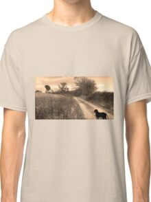 A Walk On The Trail  Classic T-Shirt