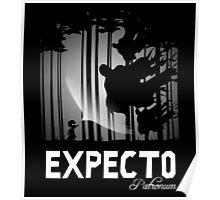 Expecto Patronum Poster