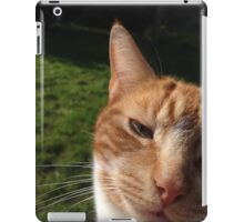 What are you doing silly human? iPad Case/Skin