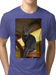 Banksy the Kitten Tri-blend T-Shirt
