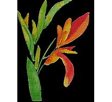Plant in orange, yellow and green watercolor painting Photographic Print