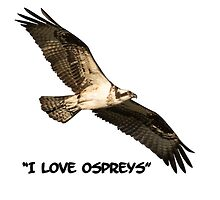 I Love Ospreys 2016-1 by Thomas Young