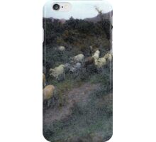 Painted Cattle Mexico iPhone Case/Skin