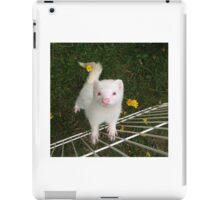 Murphy in Flowers iPad Case/Skin