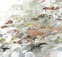 Pebbles  by OlaG