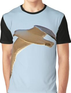 Larus Delawarensis - Ring-Billed Gull In Flight | Orient Point, New York Graphic T-Shirt