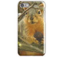 Squirrel and His Nut  iPhone Case/Skin