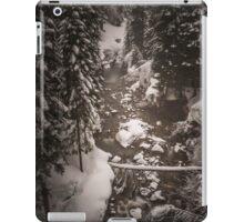 Winter Dream iPad Case/Skin