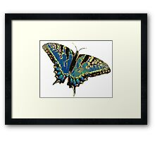 Trippy Butterfly Framed Print