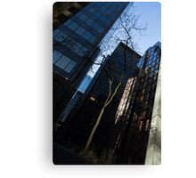 A Study in Contrasts - Downtown Toronto Miniature Park - Right Canvas Print