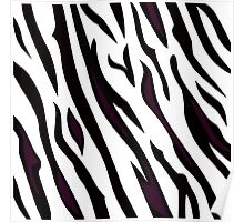 Safari zebra pattern or texture Poster