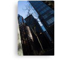 A Study in Contrasts - Downtown Toronto Miniature Park - Left Canvas Print