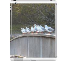 Singing Seagulls iPad Case/Skin