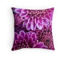 Purple Chrysanthemum 1 - fine art garden photography by Megan Campbell Throw Pillow