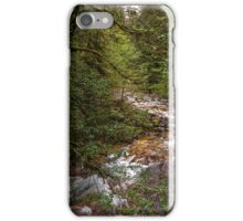 Upper Upper Soda Creek iPhone Case/Skin