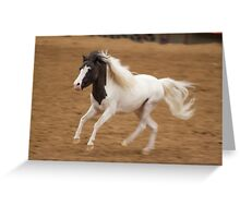 The Equine Touch - Tiny Horse Power Greeting Card