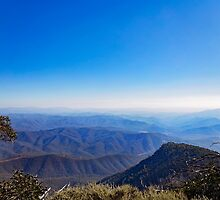 Mount Buffalo by Bevlea Ross