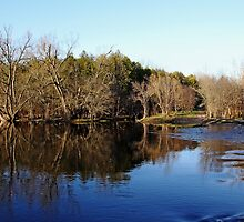 Evening On The Speed River by Debbie Oppermann