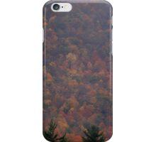 Fall Medley  iPhone Case/Skin