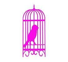Pink Bird cage by Seymour  Art