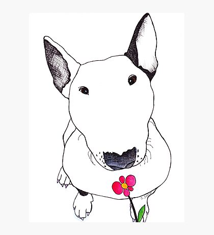 Bull Terrier Smelling Flowers  Photographic Print