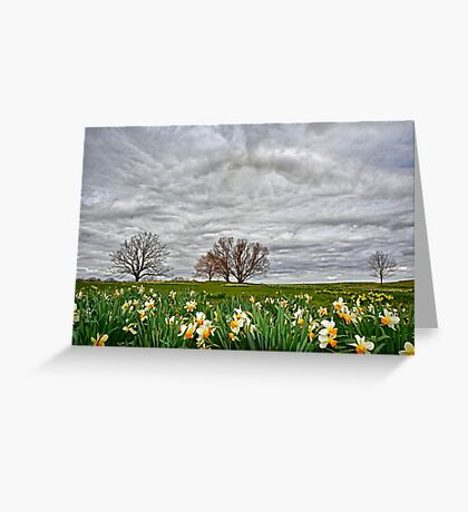 Almost Spring! Greeting Card