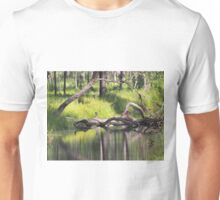 Water Reflection Unisex T-Shirt