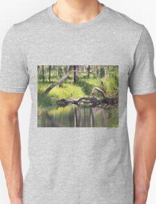 Water Reflection Unisex T-Shirt